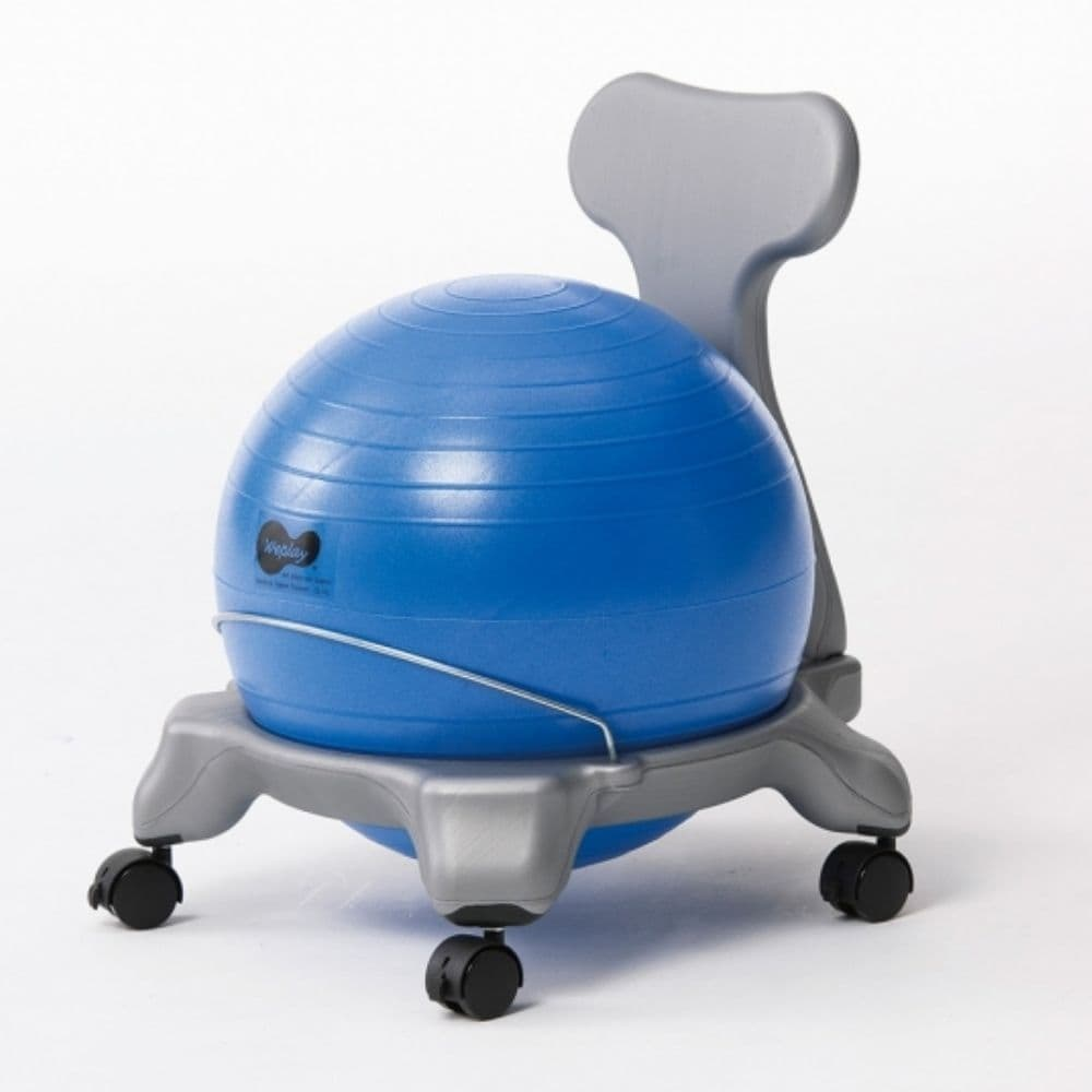 Ball Chair Ball Therapy Chair,balance Ball Chair,balance Ball Therapy Chair,therapy Chairs,special Needs Seat,special Needs Sensory Seating Chairc